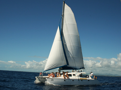 Catamaran Excursion